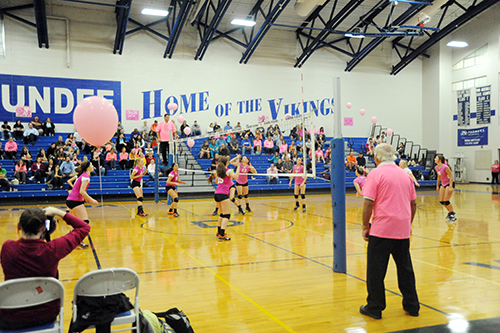 Dundee Vikings defeat Bulldogs in Dig Pink games